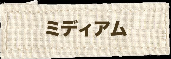山梨韮崎の美容室のミディアム