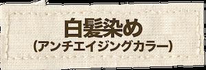 白髪染め(アンチエイジングカラー)