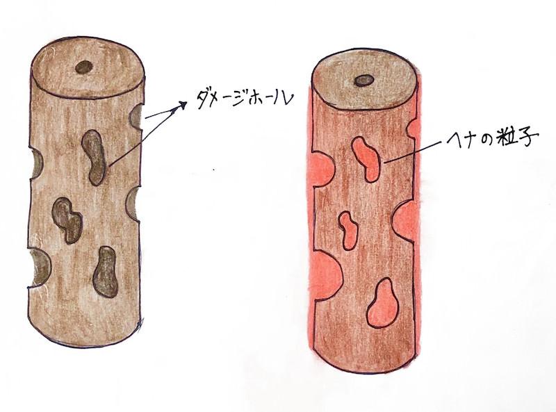 ダメージホールにヘナの粒子が入り込む